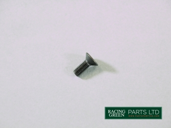 TVR E2259 - Clutch slave cylinder screw